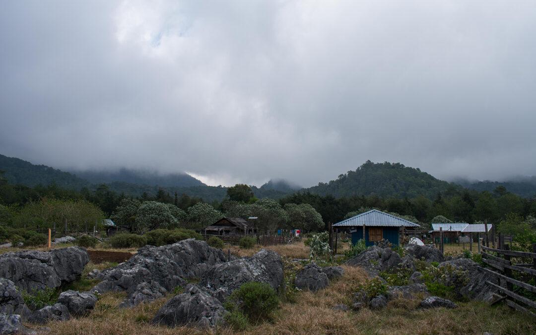 Kontserbazioa, Ingurumena eta Garapen Iraunkorra Natura Turismoa eta Iraunkortasunaren ingururko jardunaldia