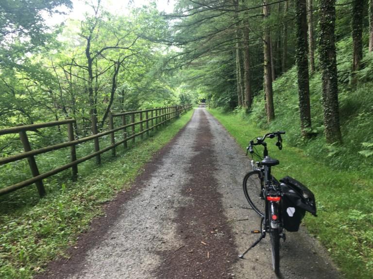Bici parada en una camino